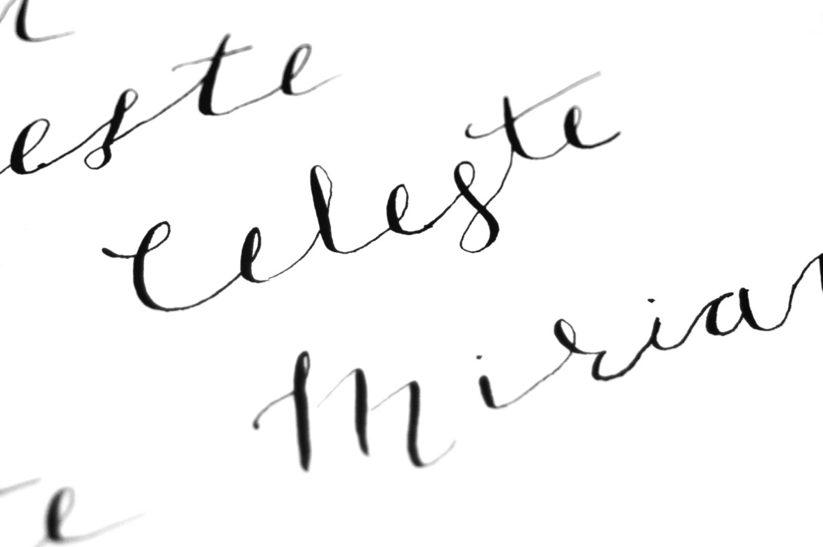 New Adventures: Beginner Modern Calligraphy